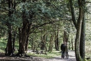 newcastle wedding photographer was photographing Dawn & Trevor at Finchale Abbey in Durham weeding photography for there pre wedding photographs ready for there big day at South Causey Inn